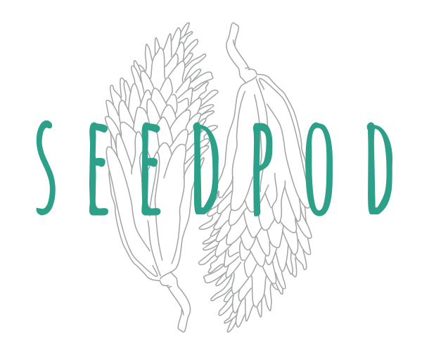 Seedpod Yoga